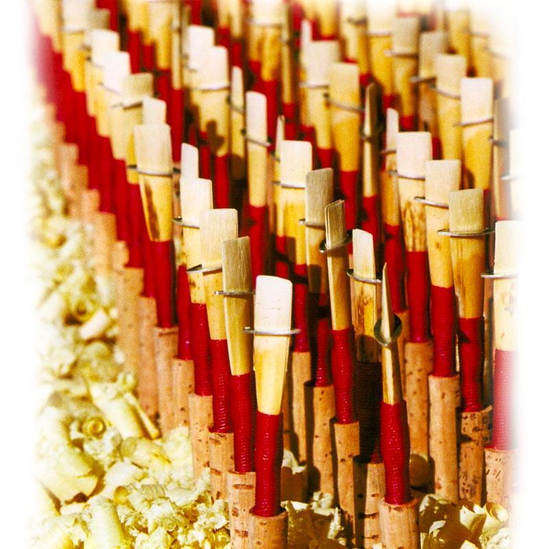 Tube Cane - Reeds